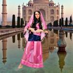Costume et déguisement de jasmine femme alladin oriental inde indienne marajah rose et bleu voile